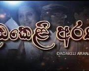 Dadakeli Arana (38) / 20-10-2016