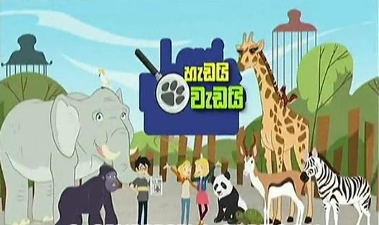 Hadai Wadai Sinhala Cartoon (26) / 16-04-2019