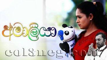 amaliya-(67)-24-01-2021-last-episode