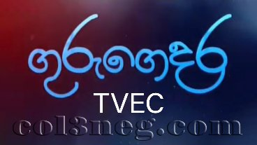 guru-gedara-tvec-(electronic-appliances-technicians)-25-08-2020