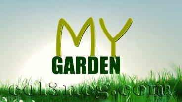 my-garden-24-01-2021
