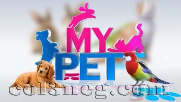 my-pet-25-09-2020