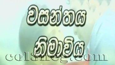 wasanthaya-nimaviya-episode-14